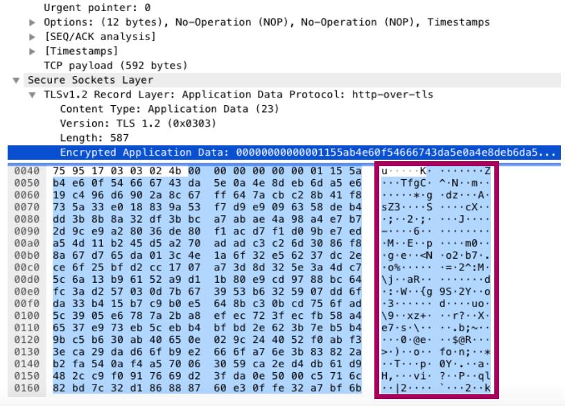 暗号化されているデータのパケットキャプチャ結果
